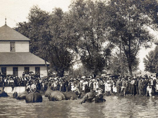 Barnum & Bailey's Circus was at Wolf's Lake and Park in 1914. A large crowd gathers to watch the elephants cool off at the lake.