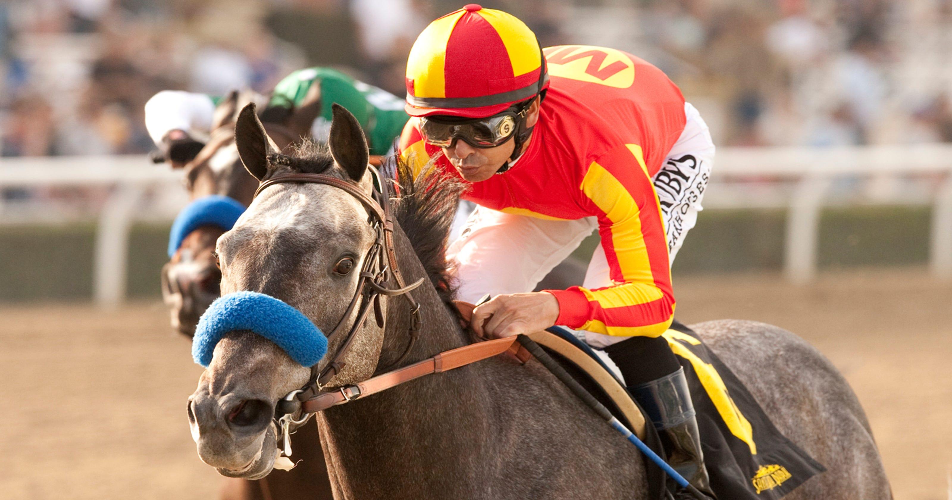Dubai horse race winners