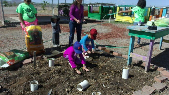 Children take part in planting at the Hidalgo County Youth Community Garden in Lordsburg, N.M. Hidalgo County Cooperative Extension recently received a grant from PNM Resources Foundation that will allow for more crops, soil and water conservation measures and beautification projects.