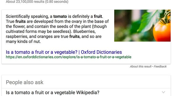 A screenshot of a Google snippet, the featured search