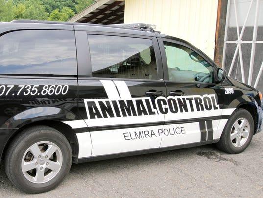 ELM_070714_animal_control1_rf.jpg
