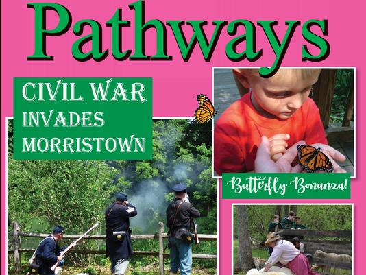 636580024481859229-spring-pathways.png