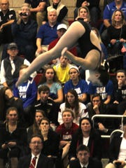 Scott's Lindsey Fox finished with a state diving championship.