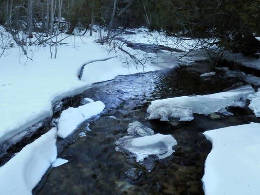 -DCA 0128 winter ice 4.jpg_20150126.jpg