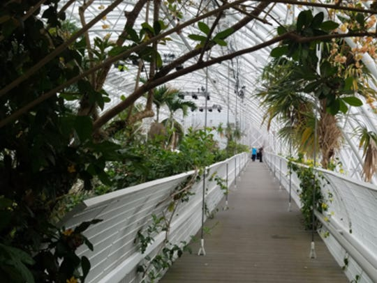 A sky bridge inside the Crystal Bridge Conservatory in Oklahoma City provides visitors close-up views of an indoor tropical forest.