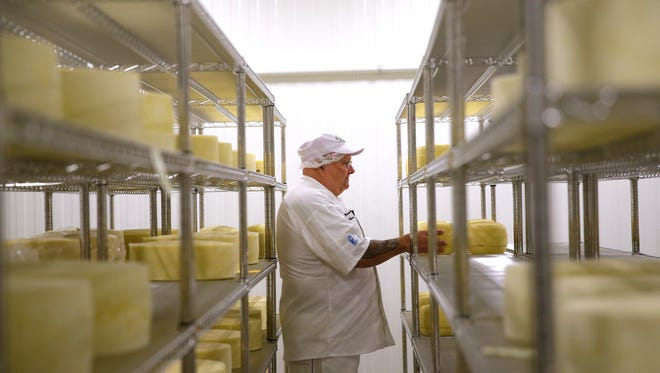 Mike Brennenstuhl, master cheesemaker and owner of Door Artisan Cheese Co., pulls a sample of cheese being aged at the Egg Harbor business.