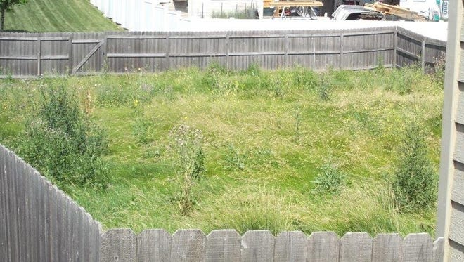 The landowners of this property had to pay the city $613 to mow and clean their back and front yard.