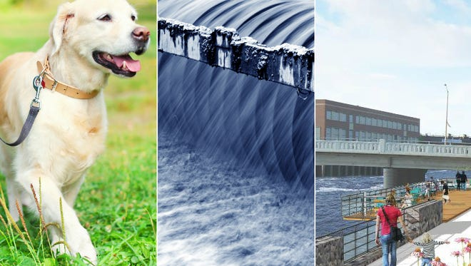 The Wisconsin Rapids City Council has taken action that affects dogs, sewer rates and the city's riverfront.