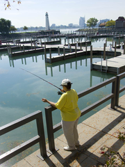The Detroit River has everything several fish species need to survive: Fast and clean water, numerous spawning grounds, and plenty of food for young fish. Here, a woman is seen fishing at Milliken State Park along the Detroit River.