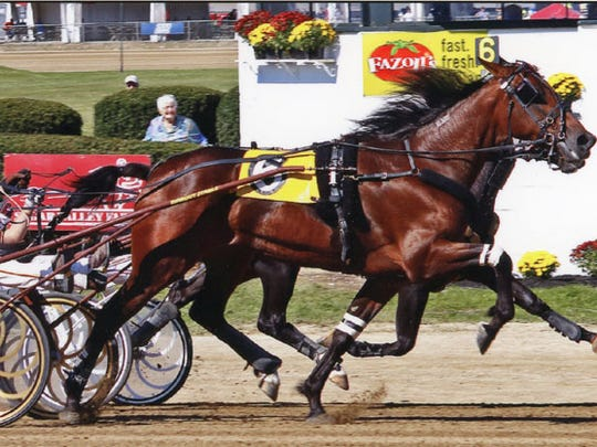 Just Jess winning the standardbred for 2-year-old trotting fillies at the Delaware County fair in Ohio