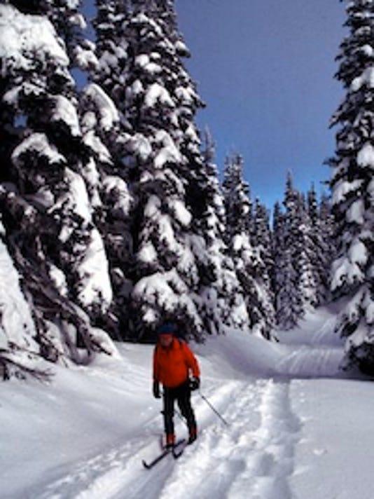 Cross-country skiing at Hurricane Ridge. By Seabury Blair.