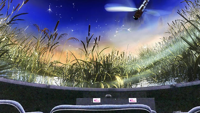 The digital planetarium at the Roberson Museum and Science Center is a good place to expand your knowledge and get out of the summer heat.