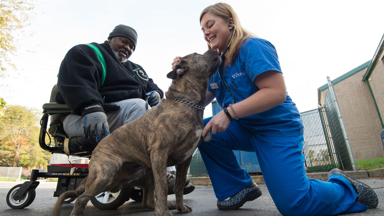 Clinic offers health care for Wilmington pets