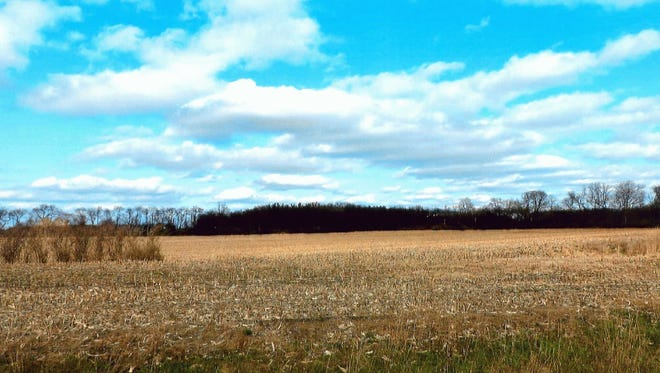 This land is part of more than 300 acres of land being auctioned in La Porte County, Indiana, on Monday to benefit Earlham College.
