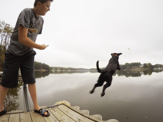 635802519877056144-Dock-jumping-dog-01