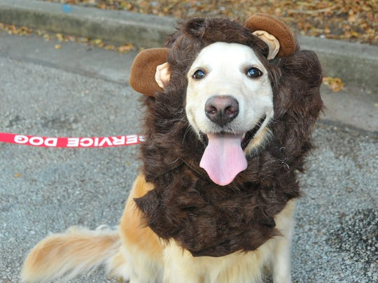 Pets like to dress up too! Cocoa Village hosts a Howl-O-Ween Petacular from 10:30 a.m. to 1:30 p.m. Saturday, Oct. 26 at Myrt Tharpe Square.