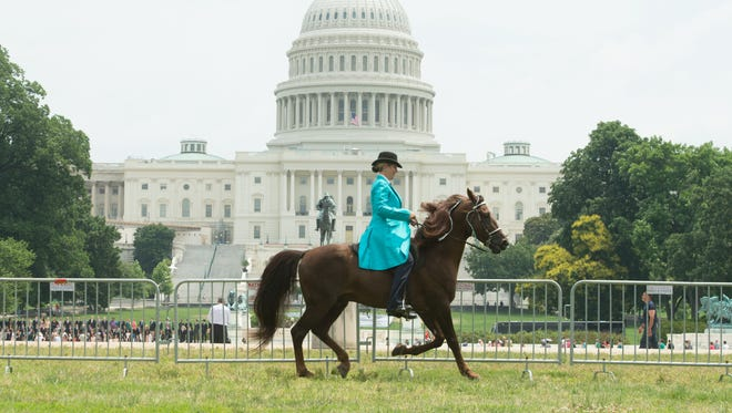 "In this 2014 file photo, activists staged a rally in front of the U.S. Capitol to raise public awareness of the abusive horse-training method known as ""soring."
