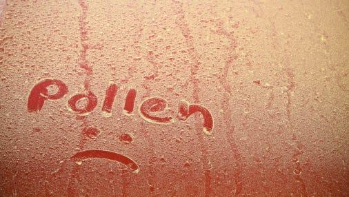 Pollen Text On Car Hood