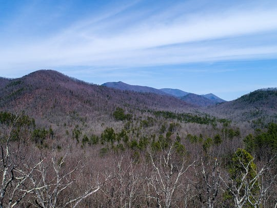 The newly conserved Goodson property in McDowell County