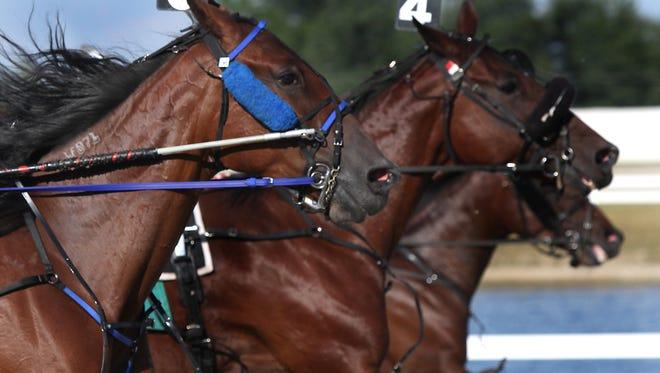 A horse race at Hoosier Park.