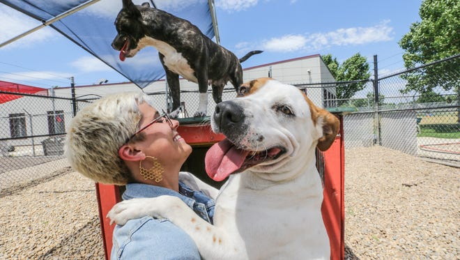 Indianapolis Animal Care Services and Humane Society for Hamilton County are participating in Clear the Shelters Day on Saturday, Aug. 18.