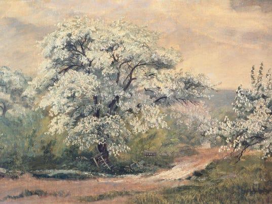 apple blossoms.jpg