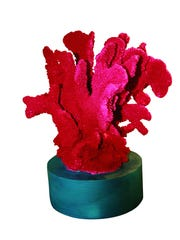 The small coral sculpture, on a round gray base, brings texture and color to the home