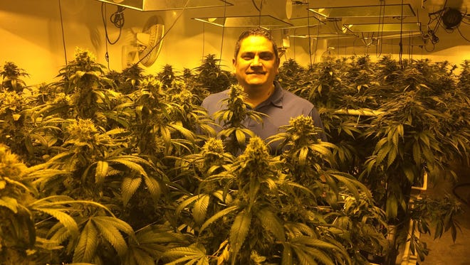 Anthony Reider, president of the Flandreau Santee Sioux Tribe, visits a marijuana grow center in Phoenix.