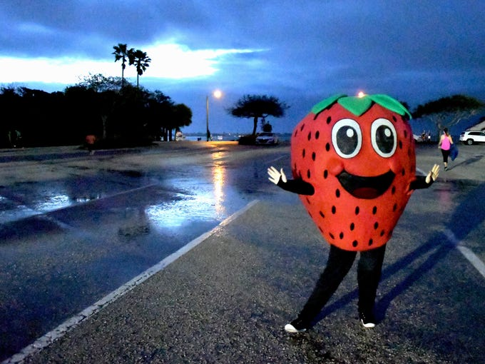 Jammer, of the Florida Strawberry Growers Association.