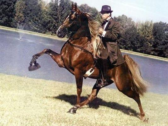 walkinghorse