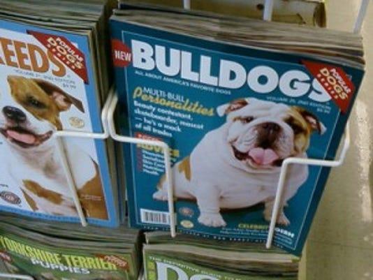 bulldog magazine