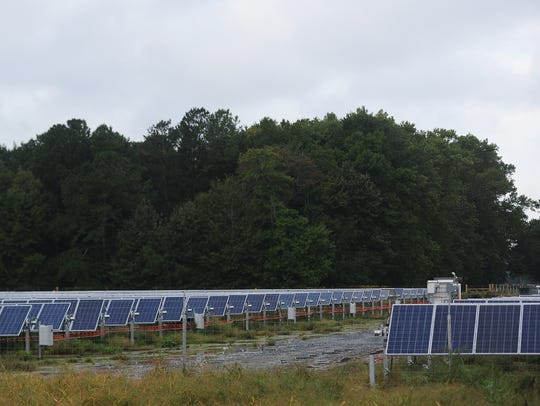 A large group of solar panels sit on a solar farm site