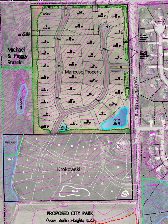 Neumann Companies Inc. proposed Mancuso Concept subdivision