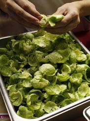 Fresh brussel sprouts are peeled.