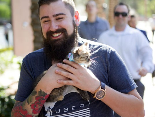 uber to deliver kittens thursday for national cat day in
