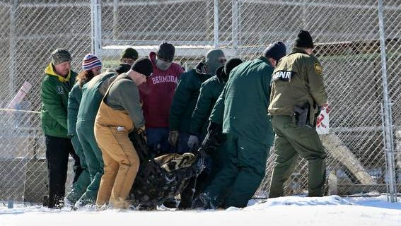 A tranquilized tiger is removed by state officials Jan. 28 from the Tiger Ridge Exotics animal farm in Stony Ridge, Ohio.