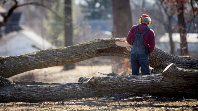 Volunteers recently cut down ash trees in a Muncie park that were killed by the emerald ash borer. Ash and other dead trees will be available for woodcutters who sign up to cut wood in Richmond's Glen Miller Park March 25-26.