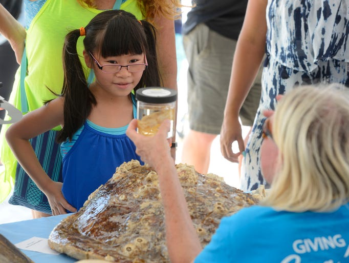 Kyra Moak,8, learns about sea turtles Saturday, August
