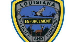 Louisiana Department of Wildlife and Fisheries Enforcement Division agents cited 11 people in Louisiana for alleged turkey-hunting violations this past weekend. Three of those cited were from Central Louisiana.