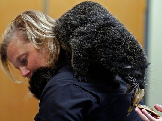 Nashville Zoo's Robin Mahoney described her friend