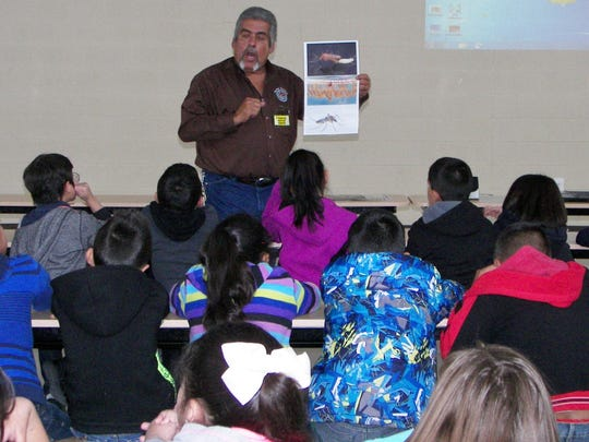 """Bobby Guerrero, Doña Ana County Vector Control technician shows students examples of different mosquitoes. """"Just like people are different, so are mosquitoes,"""" he tells them."""