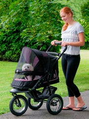 In this photo provided by Wayfair.com, a pet stroller may be the best way to take your elderly pet out for some fresh air.  One with large tires makes it easy to go for a run or hike; a protective screen keeps insects and dirt out of the interior, and keeps your pet safely in the stroller. (AP Photo/Wayfair.com)