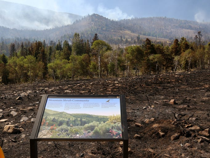 Fire damage near the Strawberry Creek Campground and