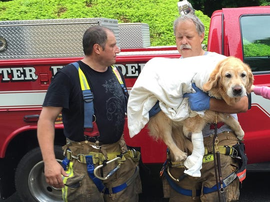 Brewster firefighters Pete Segretti and Marty Miller