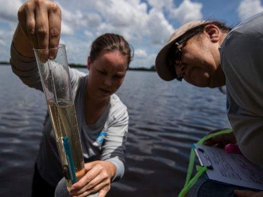 Allison Conner, a scientist for the Charlotte Harbor National Estuary Program and Meg Krieg, measure water temperature and salinity in an area of the Caloosahatchee River near 4846 East River Drive in Fort Myers on June 18, 2018. Charlotte Harbor National Estuary Program and the Calusa Waterkeeper are partnering with others to replant seagrasses in the tidal Caloosahatchee River, between I-75 and U.S. 41 bridges.