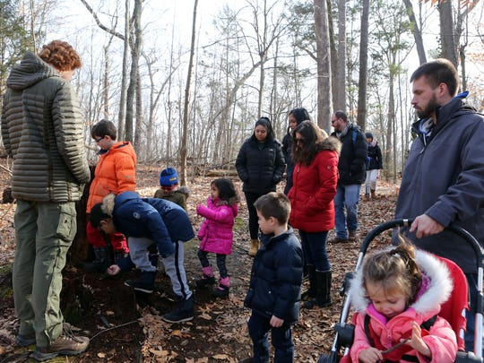 Children touch dirt from a decomposed tree during a