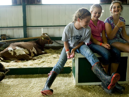 File photo of Addison County Fair & Field Days in New Haven.