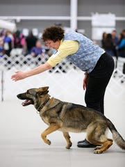 Bunny and her owner and trainer Regina Steiner of the Somerset section of Franklin in action. The two compete Monday at the Westminster Kennel Club in New York.