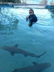 Stephanie Neumeier worked at Coral World Ocean Park