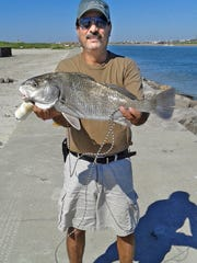 Enrique Marquez III caught this black drum while surf fishing.